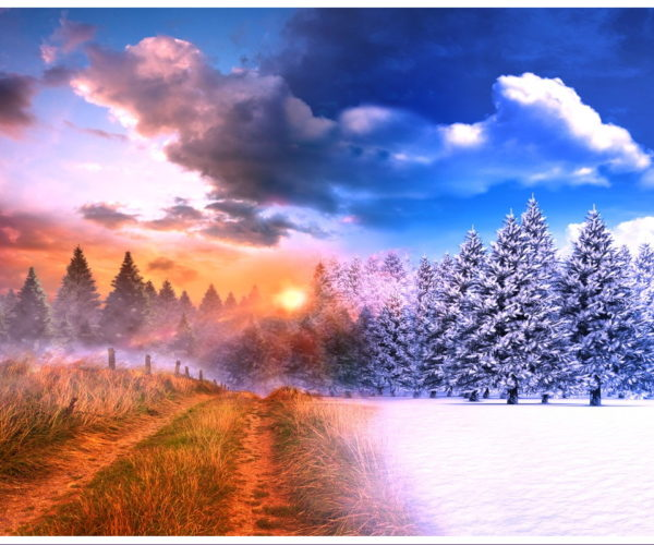 Autumn/Winter transition - October.