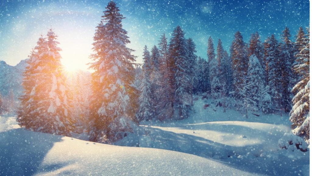 Winter development